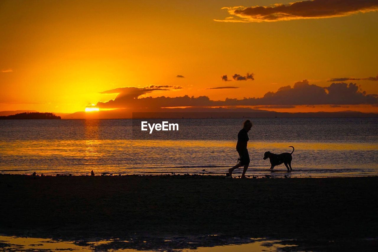 sunset, silhouette, orange color, beach, nature, sea, beauty in nature, two people, scenics, sky, togetherness, water, leisure activity, sun, lifestyles, real people, full length, horizon over water, tranquility, outdoors, men, bonding, women, pets, mammal, people