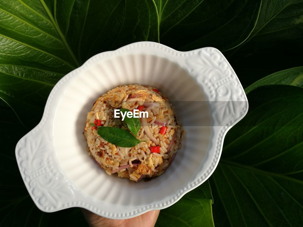 leaf, freshness, plant part, food, ready-to-eat, food and drink, plate, serving size, healthy eating, indoors, wellbeing, no people, rice - food staple, close-up, plant, green color, still life, directly above, vegetable, high angle view, leaves, herb, garnish, crockery, snack