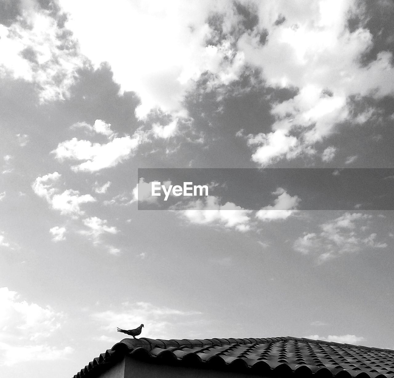 low angle view, sky, cloud - sky, day, roof, architecture, outdoors, no people, building exterior, nature, tiled roof