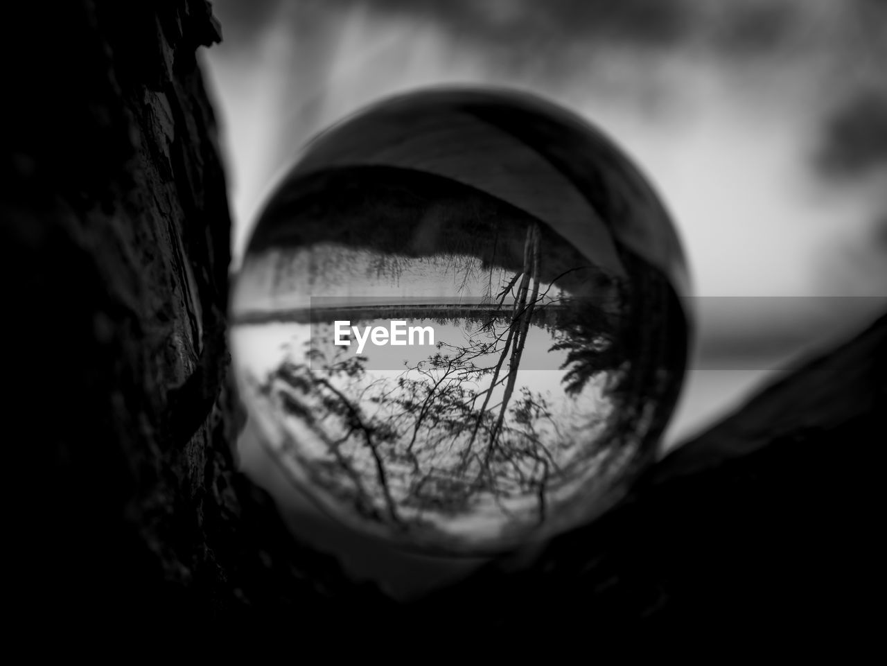 reflection, close-up, selective focus, nature, focus on foreground, no people, outdoors, day, tree, geometric shape, sky, body part, circle, single object, sphere, glass - material, still life, shape