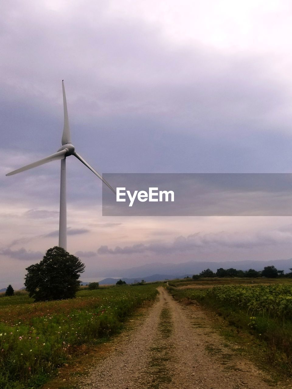 wind turbine, environmental conservation, wind power, alternative energy, sky, field, landscape, renewable energy, cloud - sky, nature, windmill, outdoors, the way forward, fuel and power generation, industrial windmill, tranquility, sunset, no people, rural scene, beauty in nature, scenics, day, grass, tree
