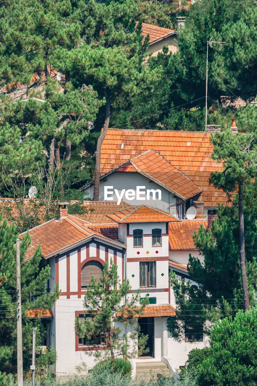 architecture, built structure, building exterior, building, tree, plant, residential district, house, roof, no people, day, nature, outdoors, growth, green color, city, window, travel destinations, roof tile, sky