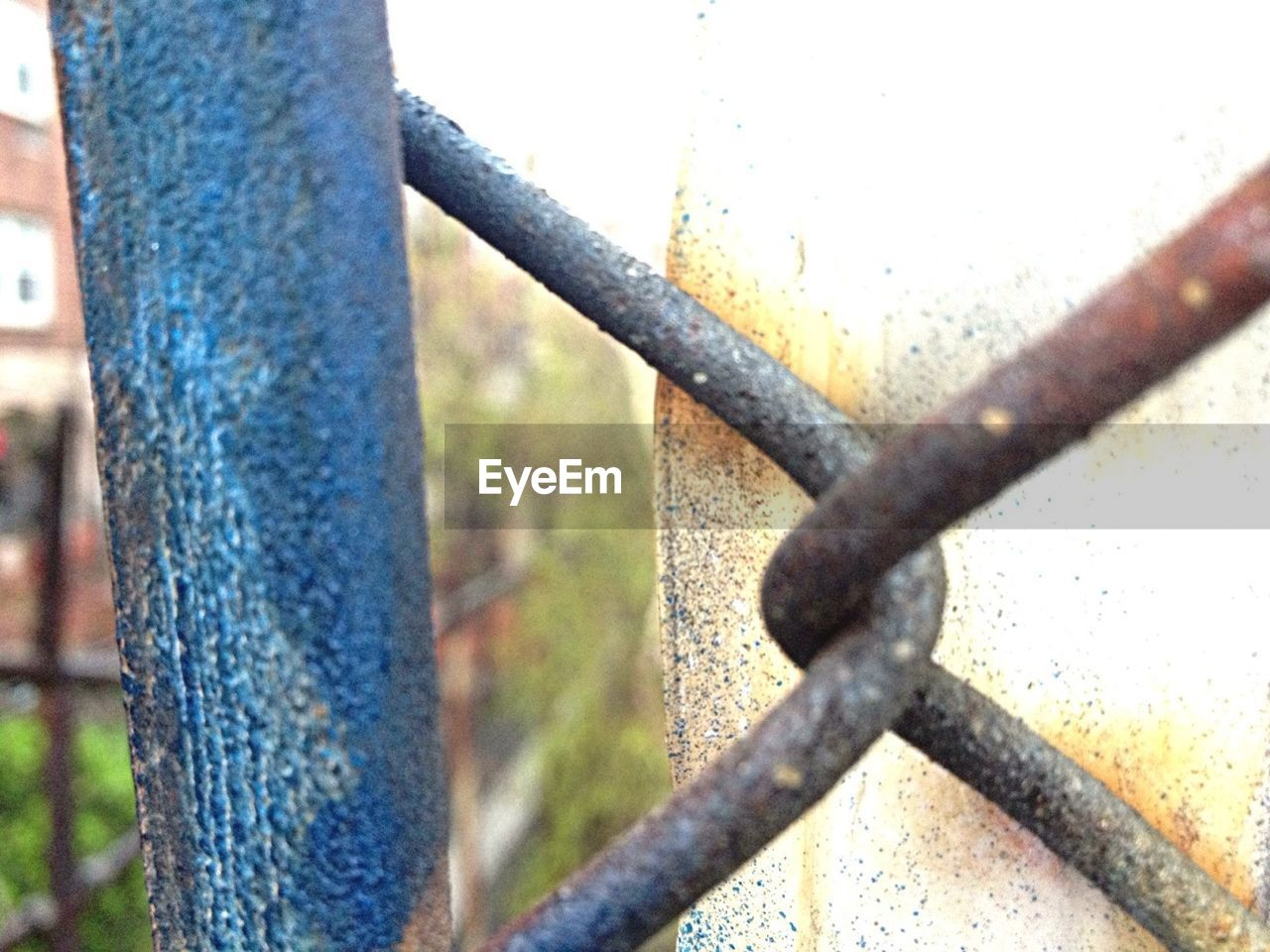 metal, close-up, day, protection, no people, outdoors, focus on foreground, rusty, tree, nature
