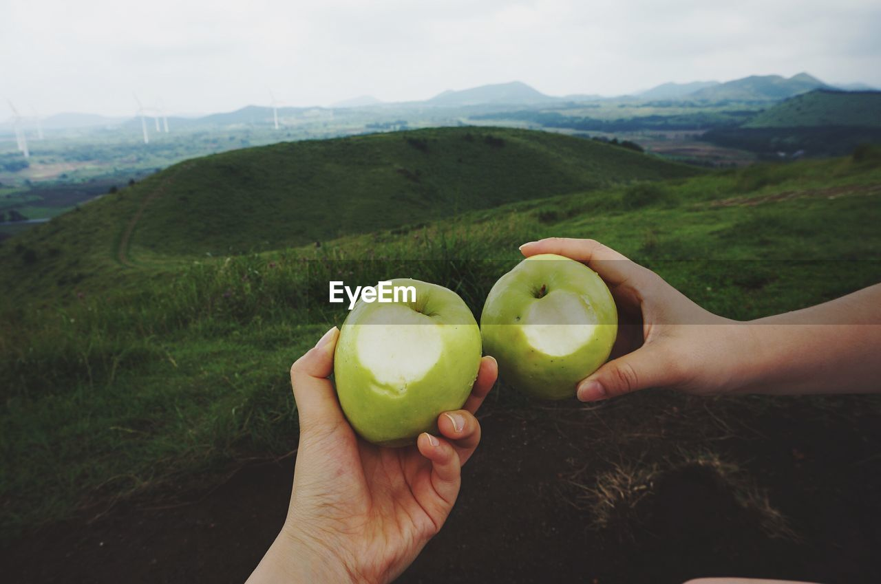 Cropped Image Of Hands Holding Granny Smith Apples On Field Against Sky