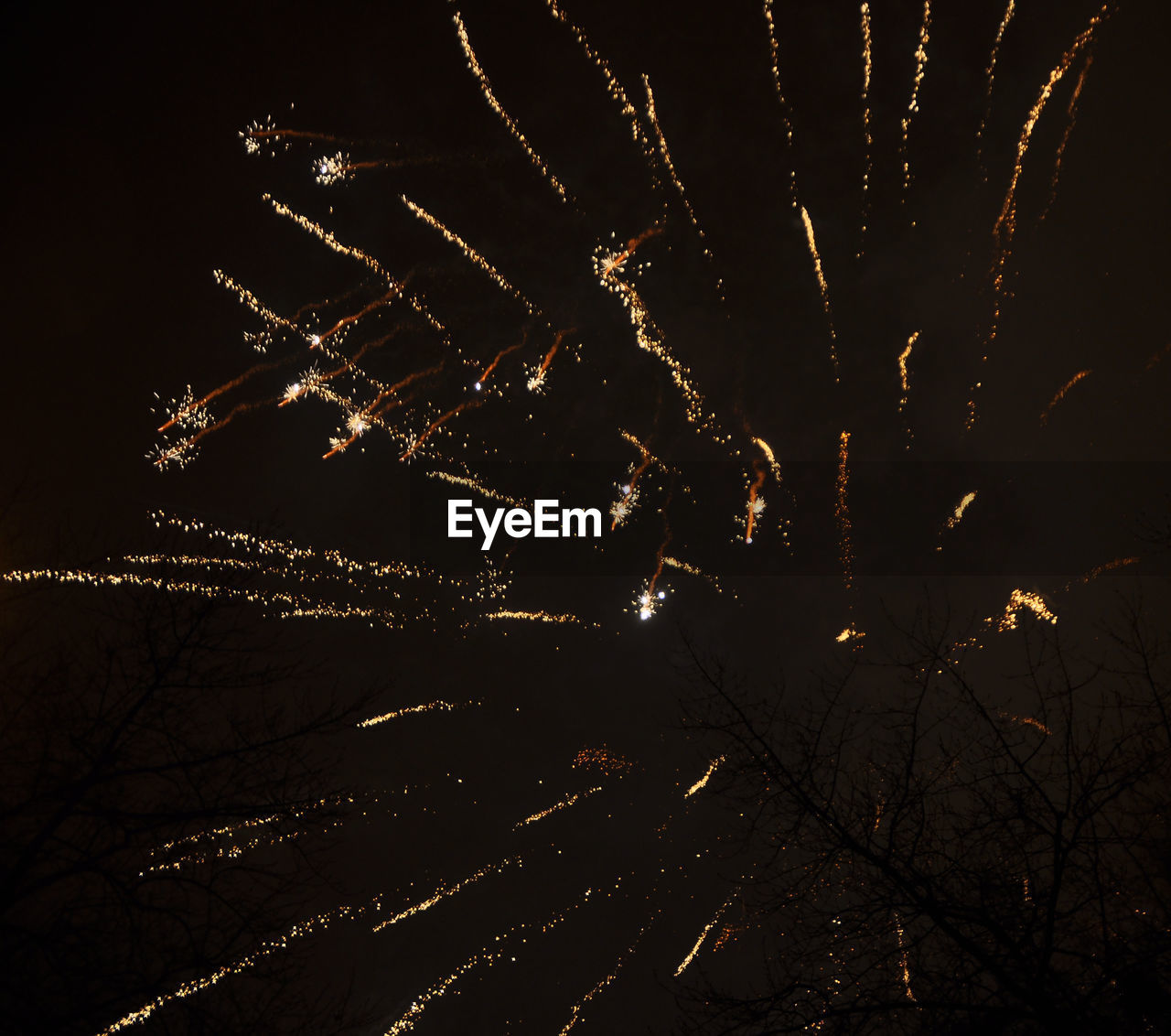 night, illuminated, celebration, event, long exposure, glowing, no people, firework, nature, motion, low angle view, sky, arts culture and entertainment, firework display, outdoors, exploding, tree, light, bare tree, firework - man made object