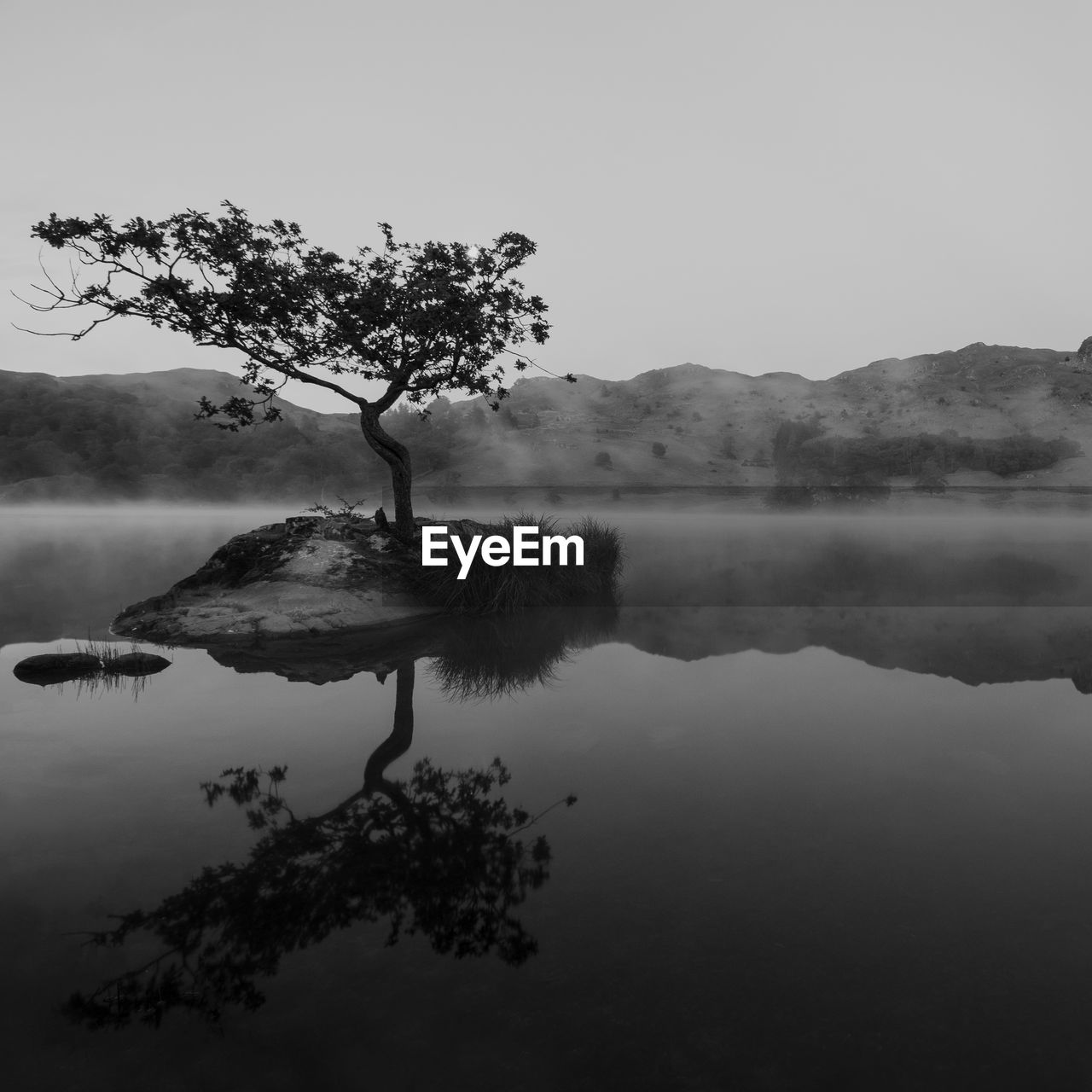 tranquility, water, tranquil scene, tree, lake, beauty in nature, plant, scenics - nature, sky, fog, reflection, waterfront, nature, no people, day, non-urban scene, idyllic, mountain, outdoors, hazy