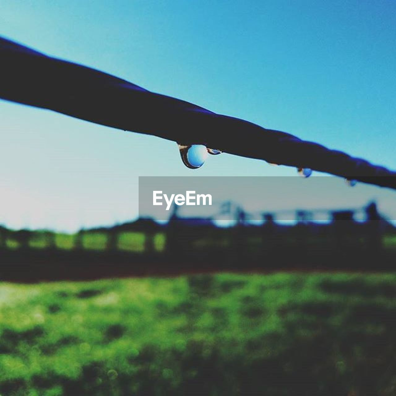 drop, focus on foreground, day, outdoors, nature, clear sky, grass, no people, landscape, sky, close-up, water, beauty in nature, fragility, dripping