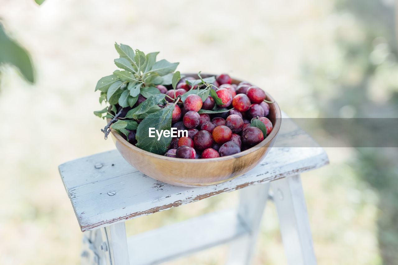 healthy eating, food, fruit, food and drink, freshness, wellbeing, focus on foreground, container, leaf, berry fruit, plant part, no people, day, close-up, nature, still life, agriculture, plant, selective focus, outdoors, ripe