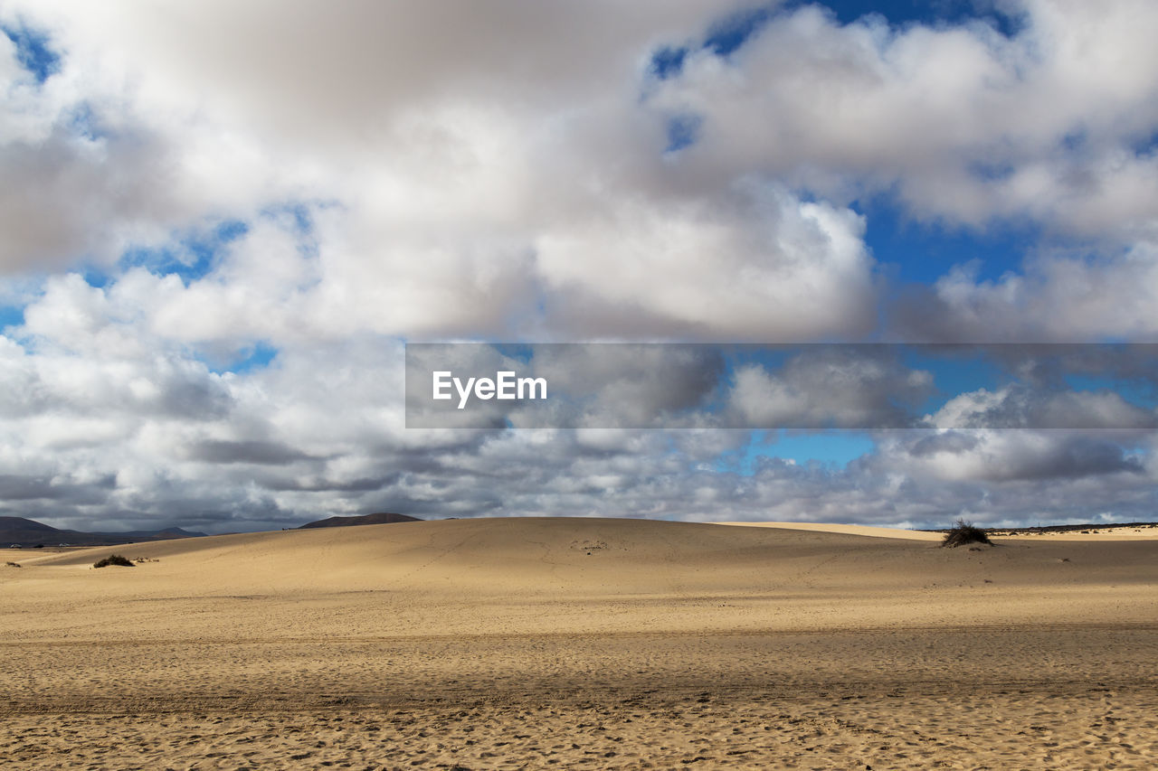sand, landscape, desert, arid climate, nature, sand dune, cloud - sky, extreme terrain, scenics, tranquil scene, beauty in nature, sky, day, remote, geology, tranquility, physical geography, outdoors, travel destinations, animal themes, no people, mammal