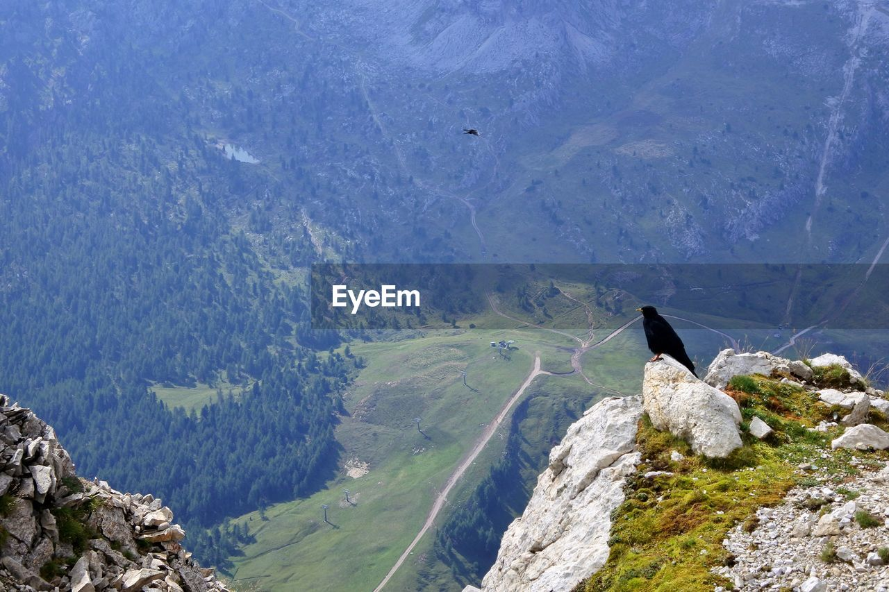 Scenic view of mountain range with black crow