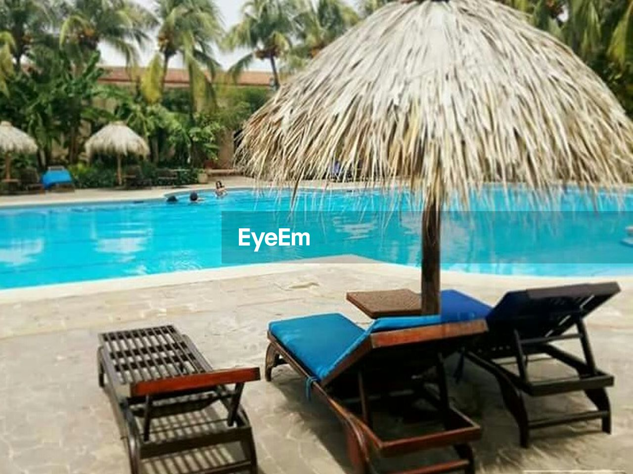 swimming pool, water, no people, day, tourist resort, luxury, thatched roof, chair, tranquility, beach, luxury hotel, vacations, outdoors, palm tree, nature, close-up