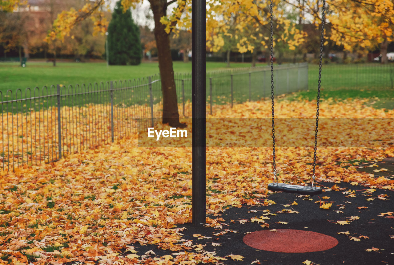 autumn, leaf, plant part, tree, plant, change, park, nature, park - man made space, day, no people, orange color, playground, outdoors, land, grass, focus on foreground, beauty in nature, sport, field, leaves, outdoor play equipment, fall