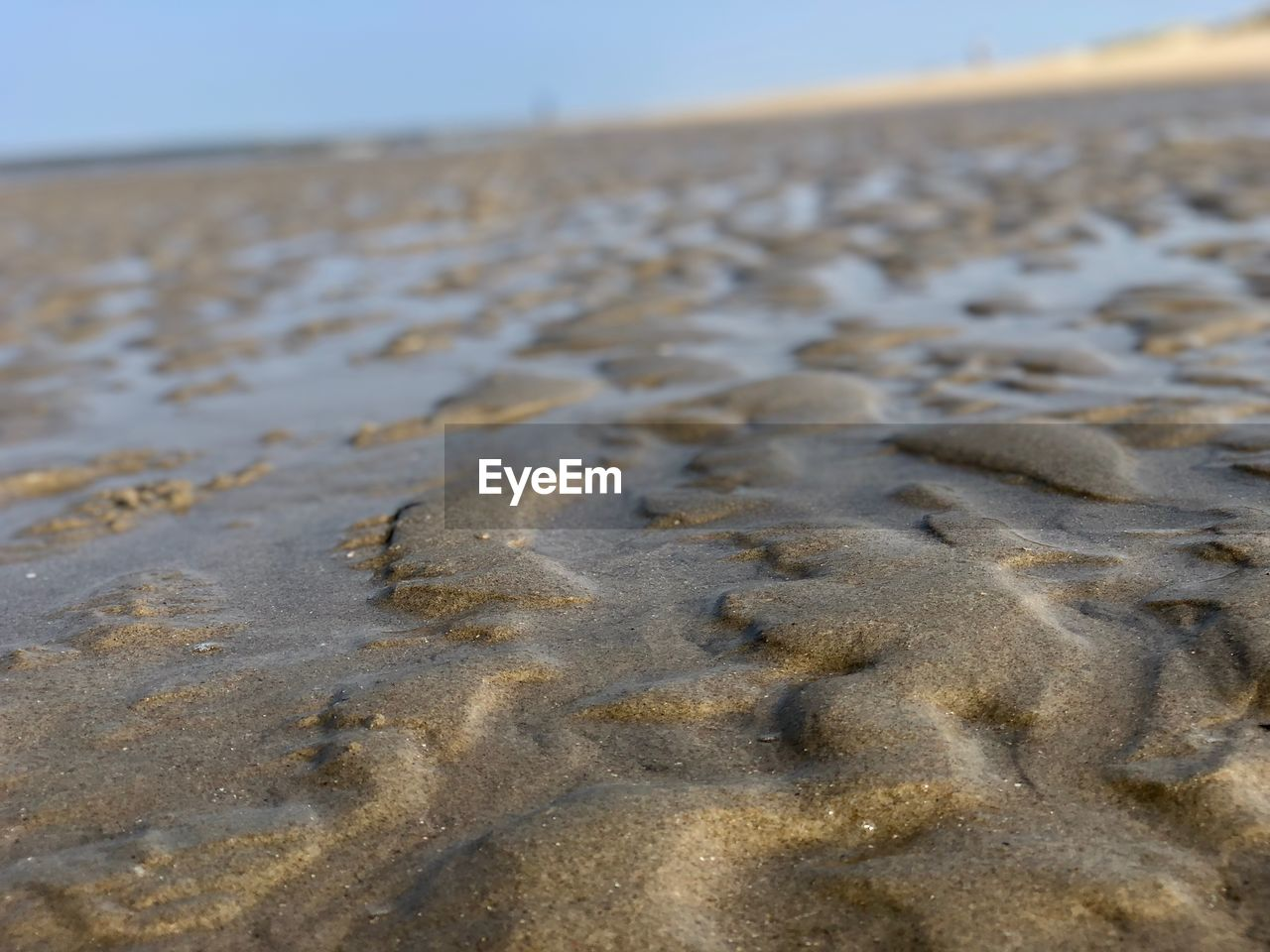 land, beach, sand, nature, no people, sky, day, focus on foreground, tranquility, beauty in nature, landscape, close-up, outdoors, environment, scenics - nature, water, sea, pattern, selective focus, clear sky, surface level, arid climate