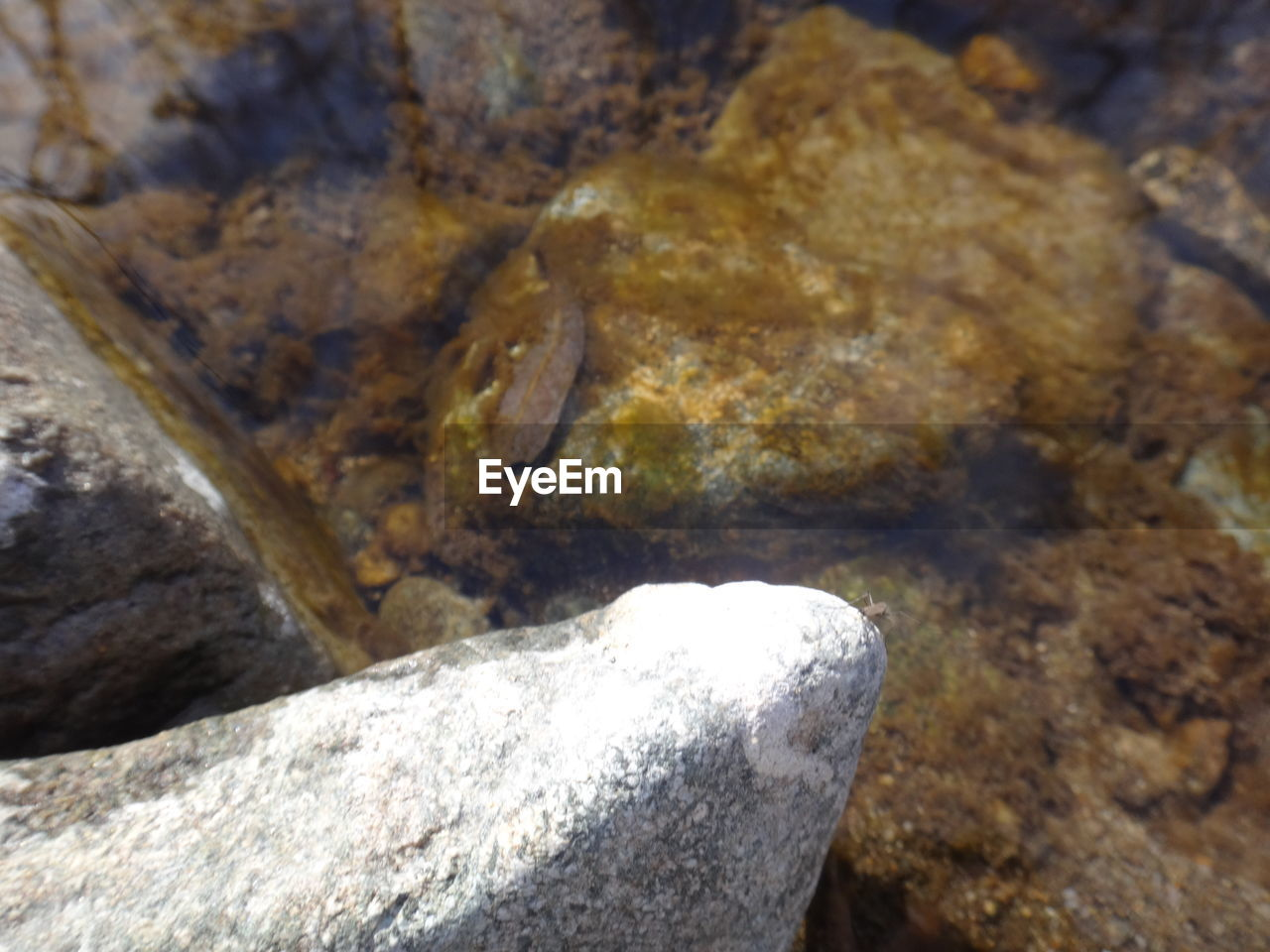 rock - object, nature, water, no people, day, textured, close-up, outdoors, beauty in nature
