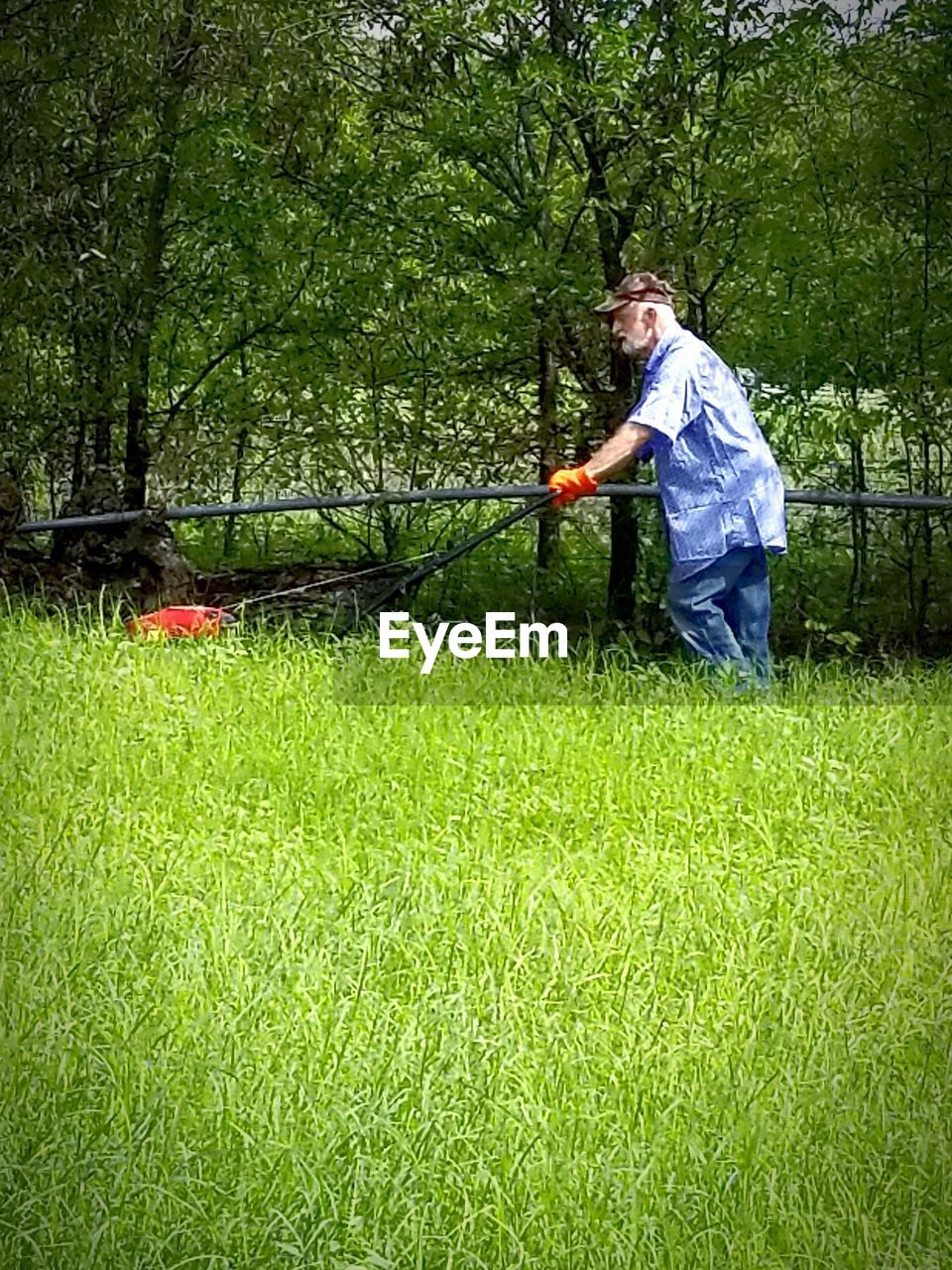 plant, grass, one person, nature, green color, real people, growth, casual clothing, lifestyles, full length, leisure activity, day, land, tree, holding, men, standing, field, outdoors, gardening, garden hose