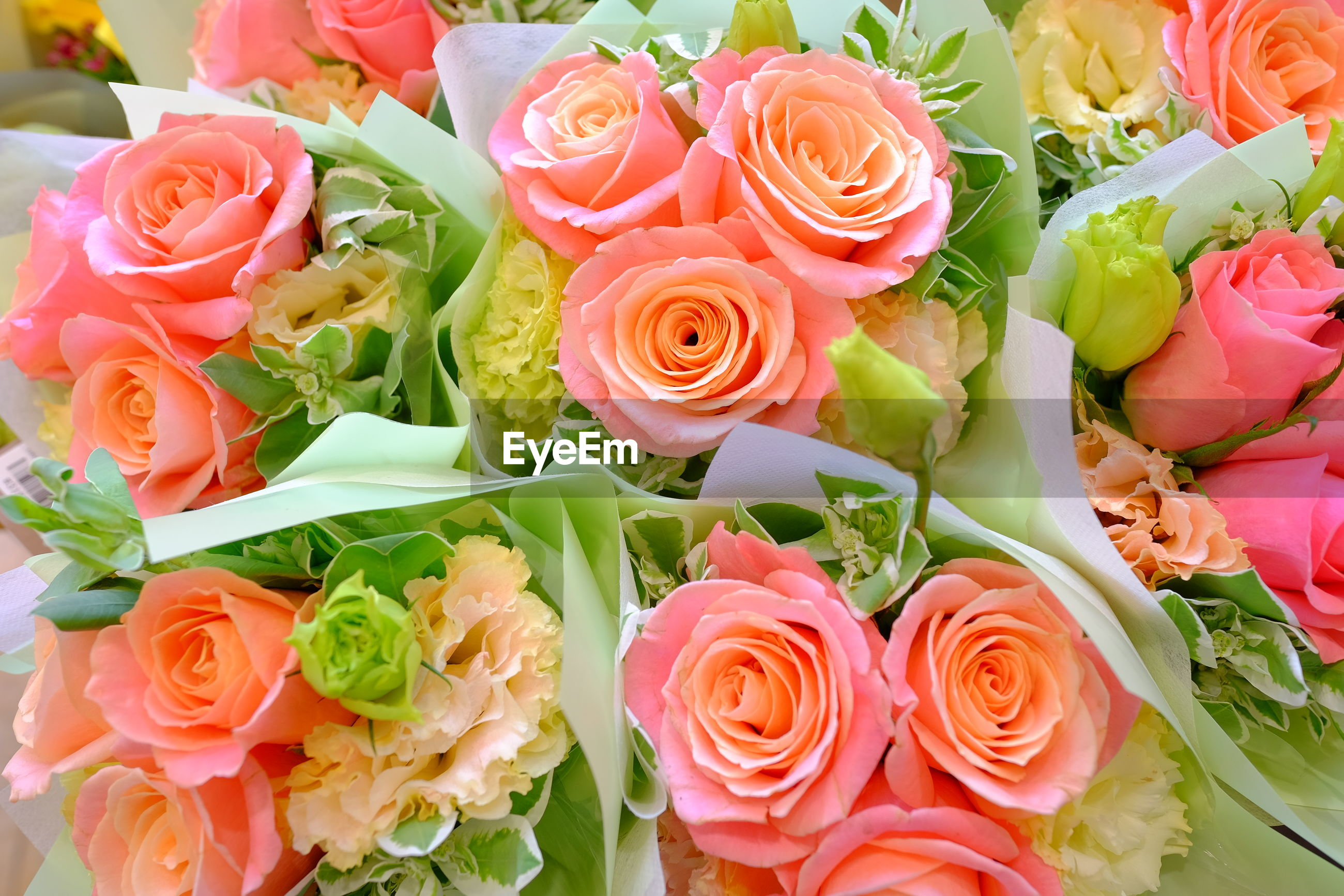 CLOSE-UP OF ROSES ON BOUQUET