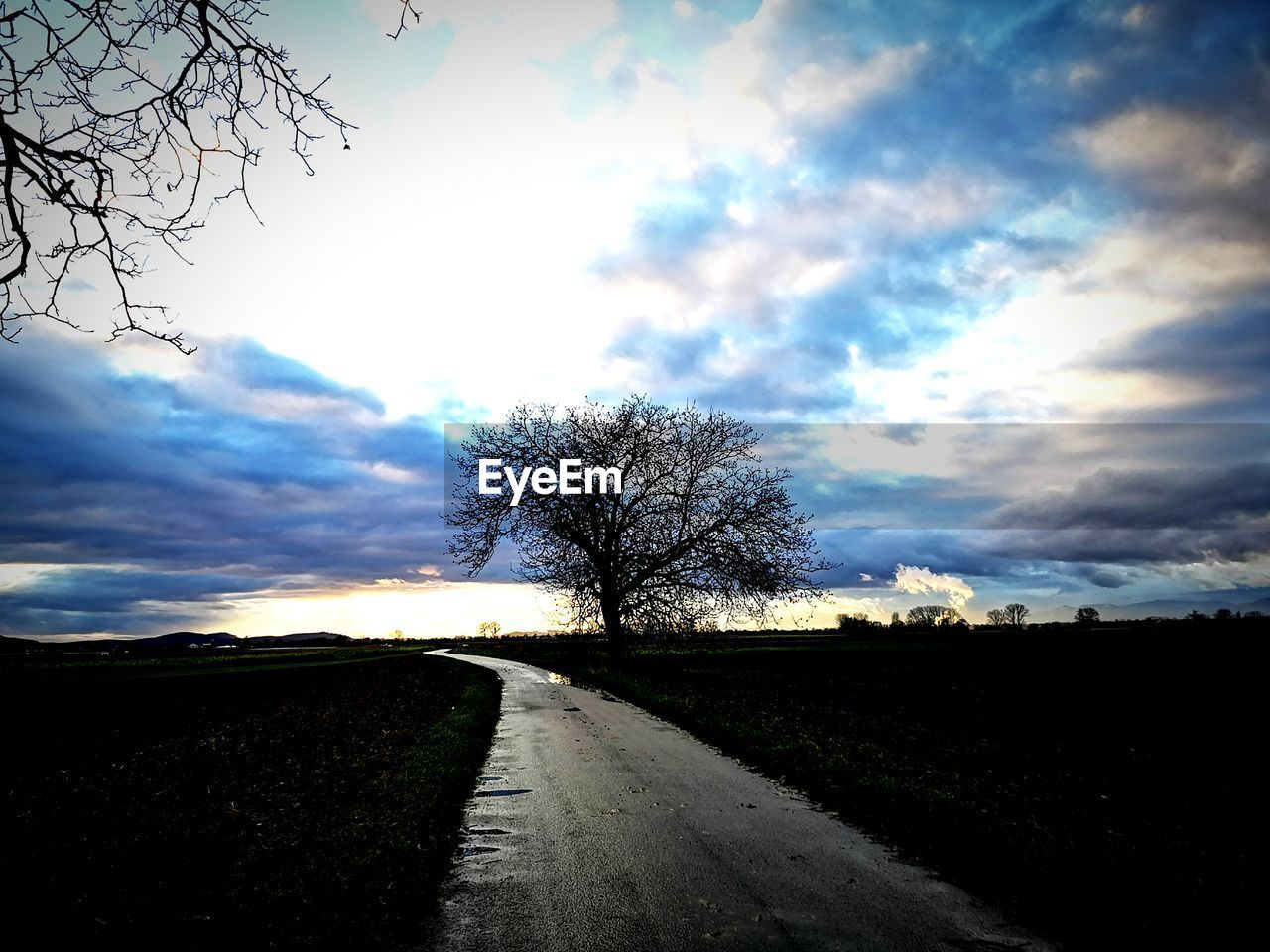 sky, cloud - sky, tree, road, direction, the way forward, plant, transportation, no people, beauty in nature, tranquility, nature, bare tree, landscape, tranquil scene, field, environment, diminishing perspective, scenics - nature, land, outdoors, long