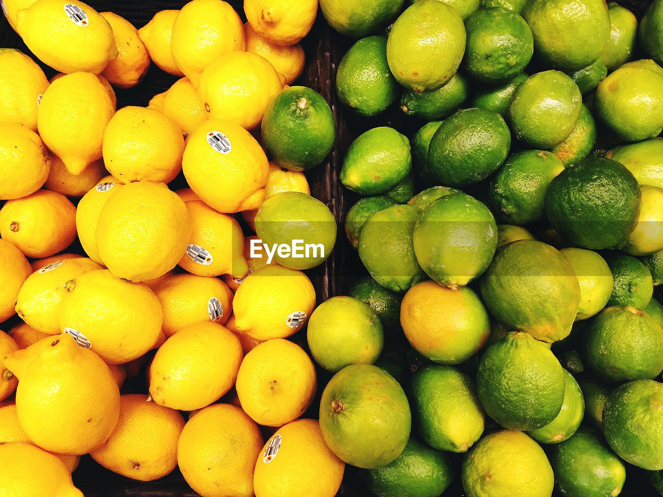 Full frame shot of citrus fruits