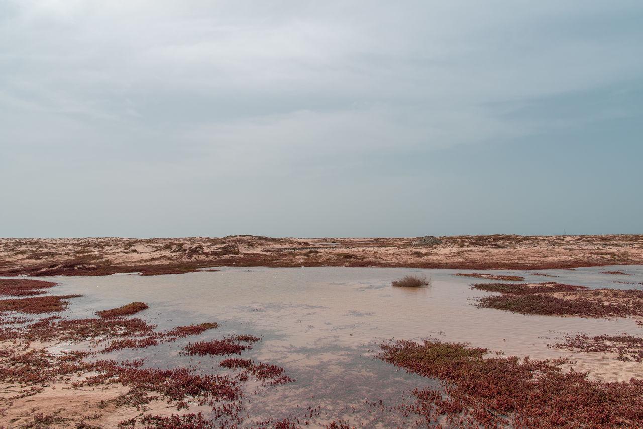 sky, water, scenics - nature, tranquility, beauty in nature, cloud - sky, tranquil scene, sea, nature, no people, day, non-urban scene, land, horizon, beach, environment, idyllic, outdoors, remote, horizon over water, salt flat