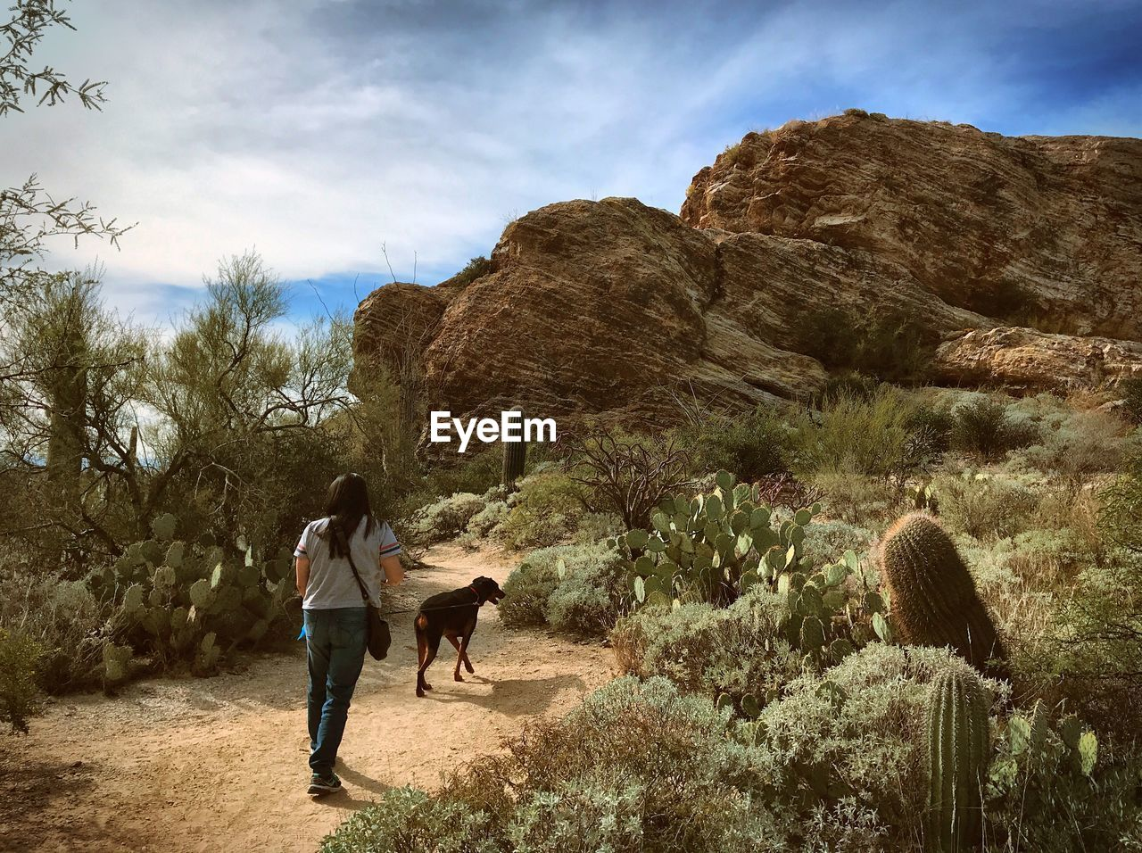 Rear view of woman walking with dog on footpath in desert against sky
