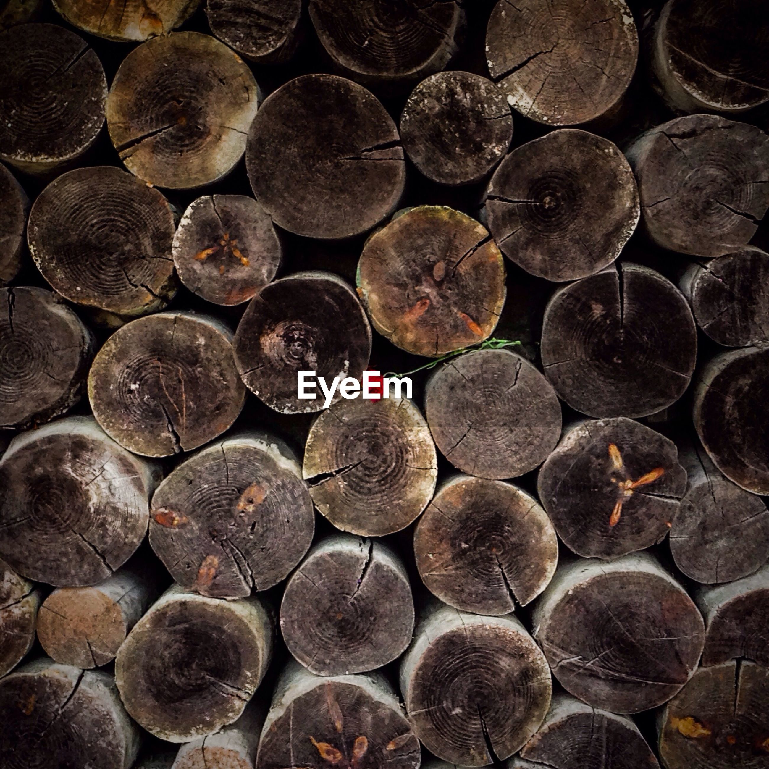 large group of objects, abundance, stack, backgrounds, firewood, full frame, stone - object, lumber industry, deforestation, log, pebble, heap, timber, textured, wood - material, arrangement, outdoors, no people, circle, pattern