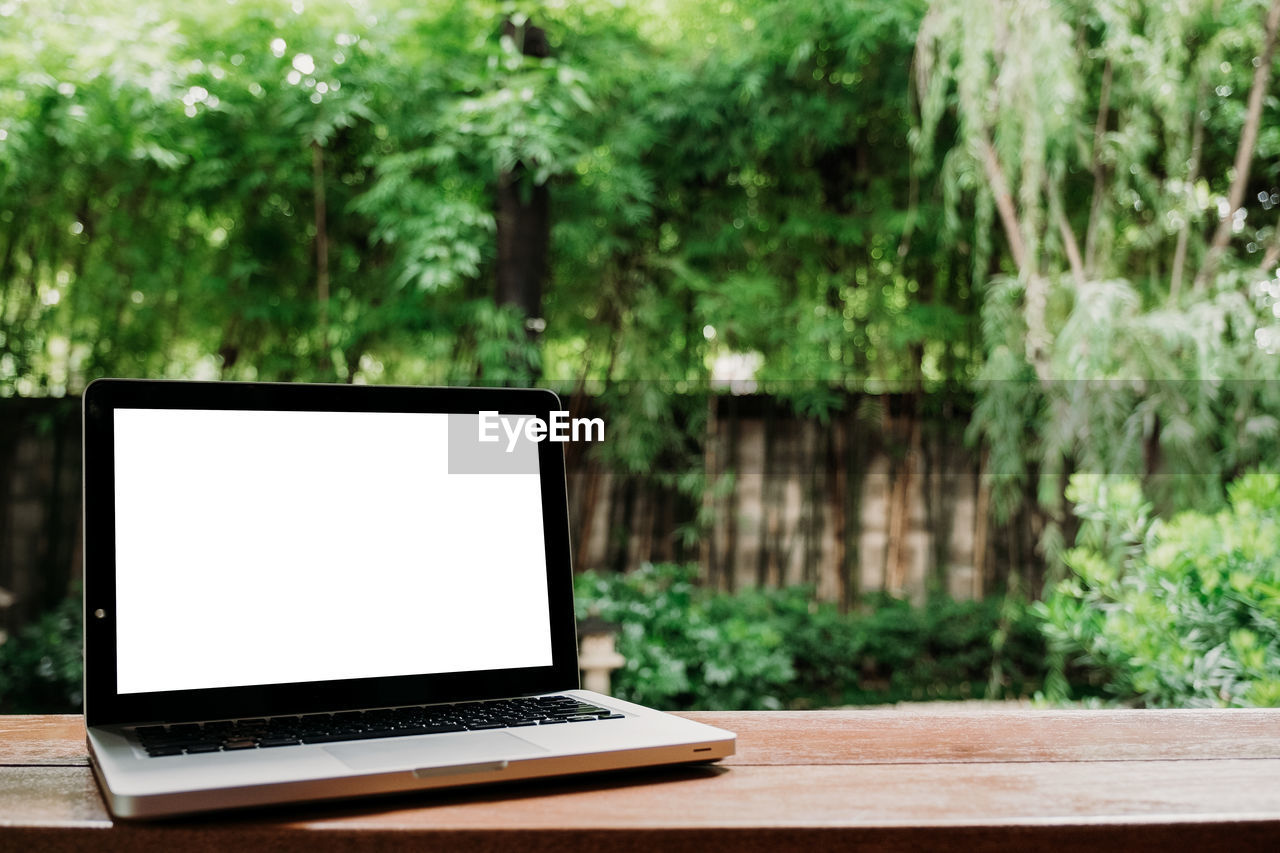 technology, computer, wireless technology, laptop, table, communication, connection, tree, plant, no people, focus on foreground, computer monitor, computer equipment, day, wood - material, outdoors, nature, portability, green color, screen, blank