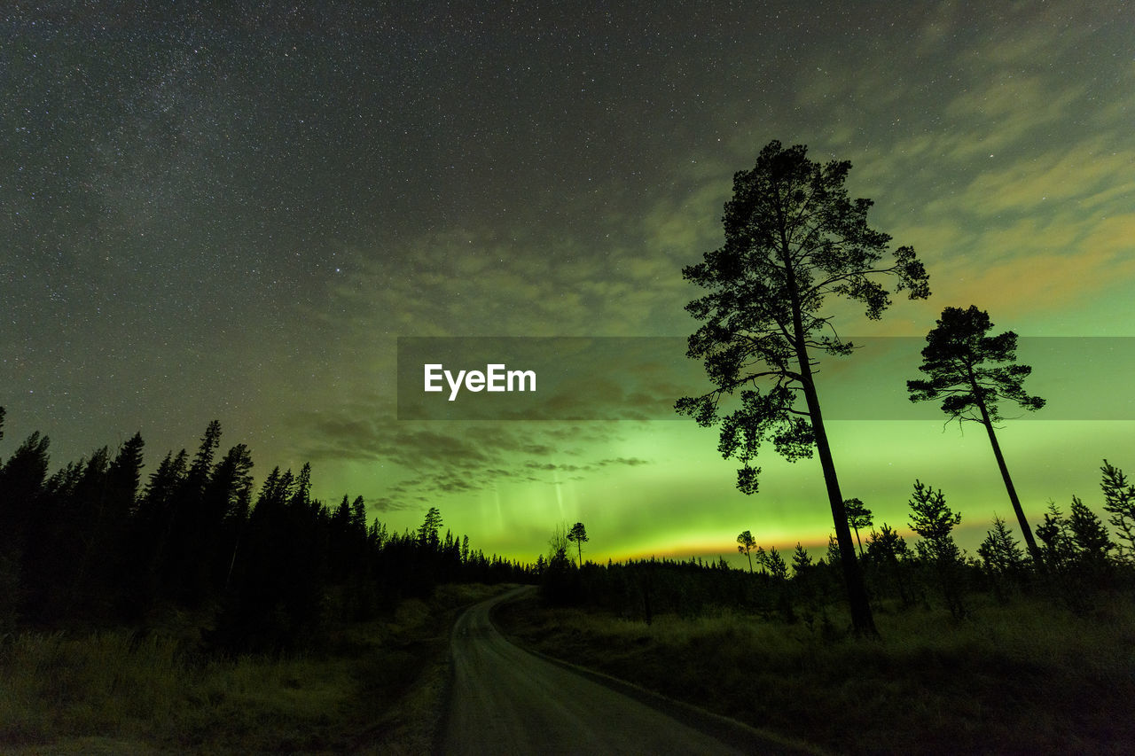Road amidst silhouette trees on field against sky with aurora