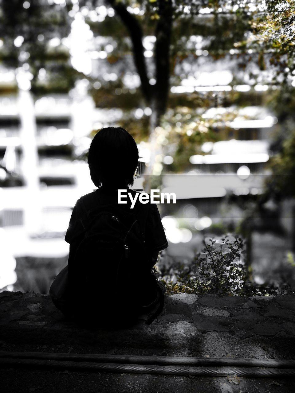 rear view, real people, one person, sitting, focus on foreground, tree, childhood, outdoors, lifestyles, full length, boys, day, building exterior, one boy only, people