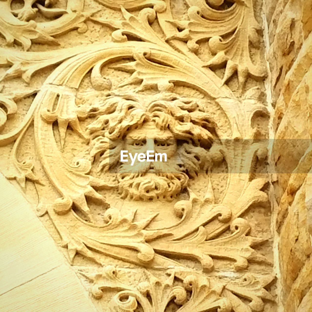 no people, bas relief, italian food, close-up, indoors, day
