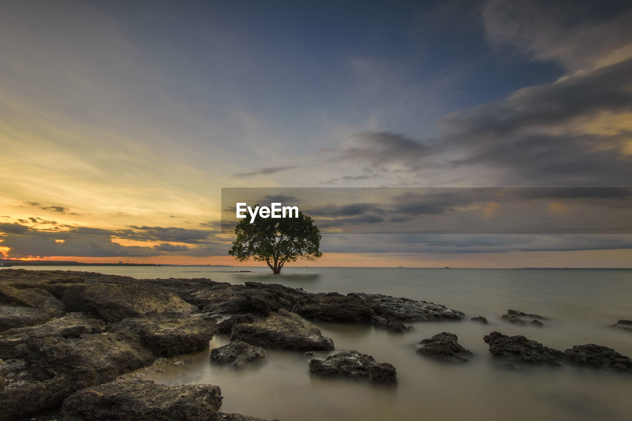 sky, beauty in nature, cloud - sky, water, scenics - nature, sunset, sea, tranquil scene, tranquility, horizon, horizon over water, solid, nature, rock, rock - object, no people, idyllic, tree, land, outdoors