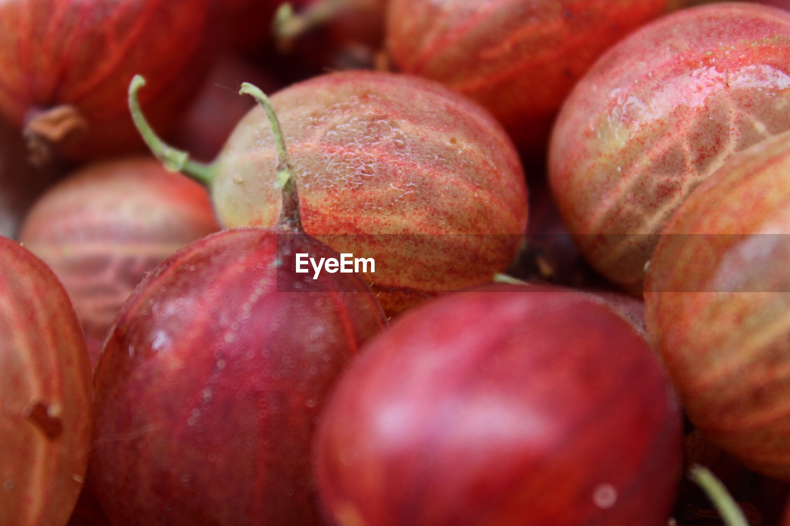 food and drink, fruit, healthy eating, red, food, close-up, freshness, full frame, no people, backgrounds, day, outdoors