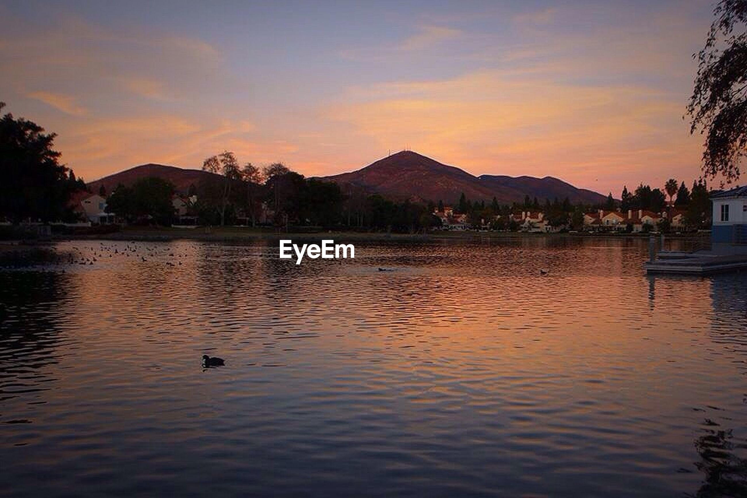 water, bird, animal themes, mountain, sunset, wildlife, animals in the wild, lake, sky, waterfront, silhouette, rippled, scenics, mountain range, reflection, swan, tranquil scene, beauty in nature, nature, river