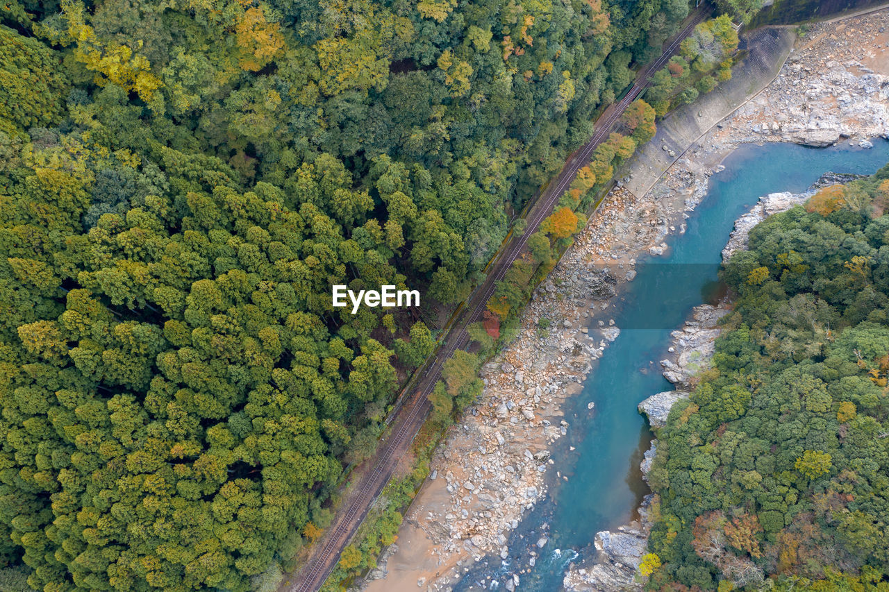 HIGH ANGLE VIEW OF RIVER AMIDST TREES AND PLANTS