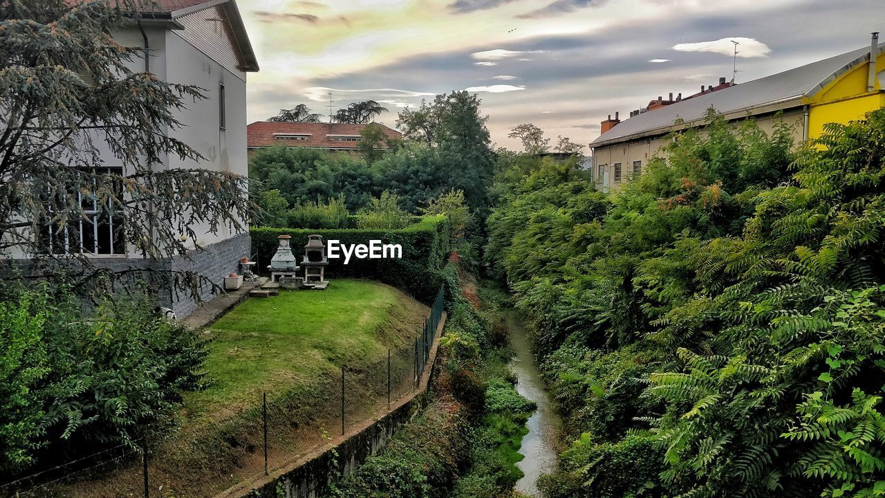 plant, built structure, architecture, tree, building exterior, nature, cloud - sky, building, sky, growth, water, green color, bridge, no people, day, transportation, house, outdoors, connection, bridge - man made structure, canal