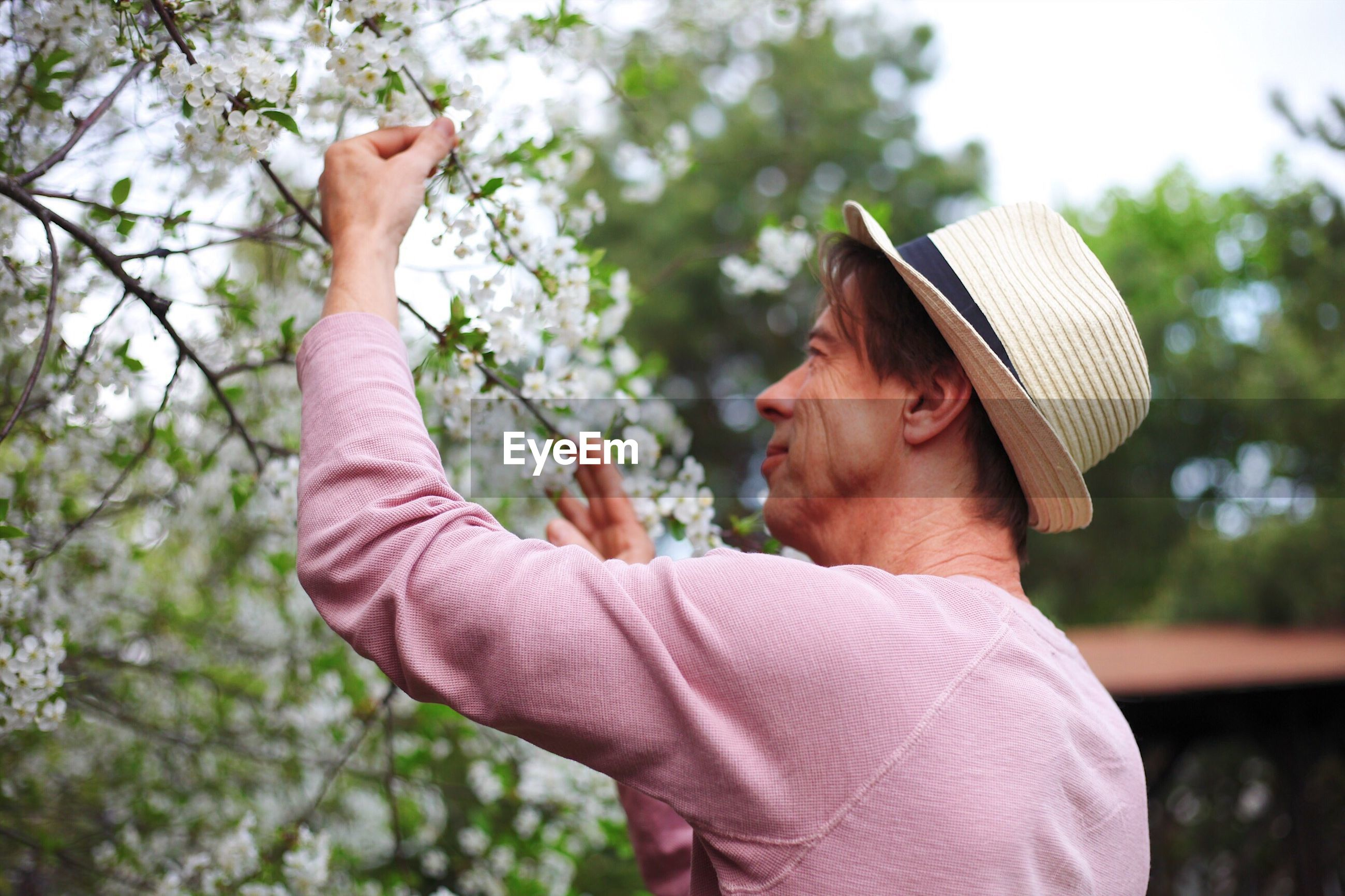 Side view of mature man picking flowers from plant