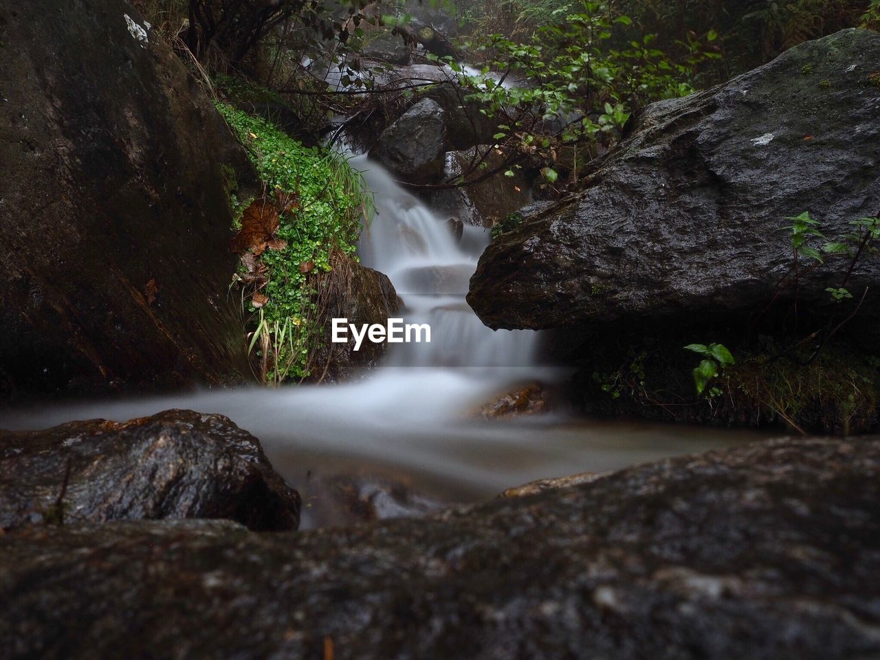 rock, rock - object, water, solid, scenics - nature, flowing water, beauty in nature, long exposure, waterfall, motion, forest, no people, land, tree, nature, plant, blurred motion, environment, flowing, outdoors, stream - flowing water, power in nature, rainforest