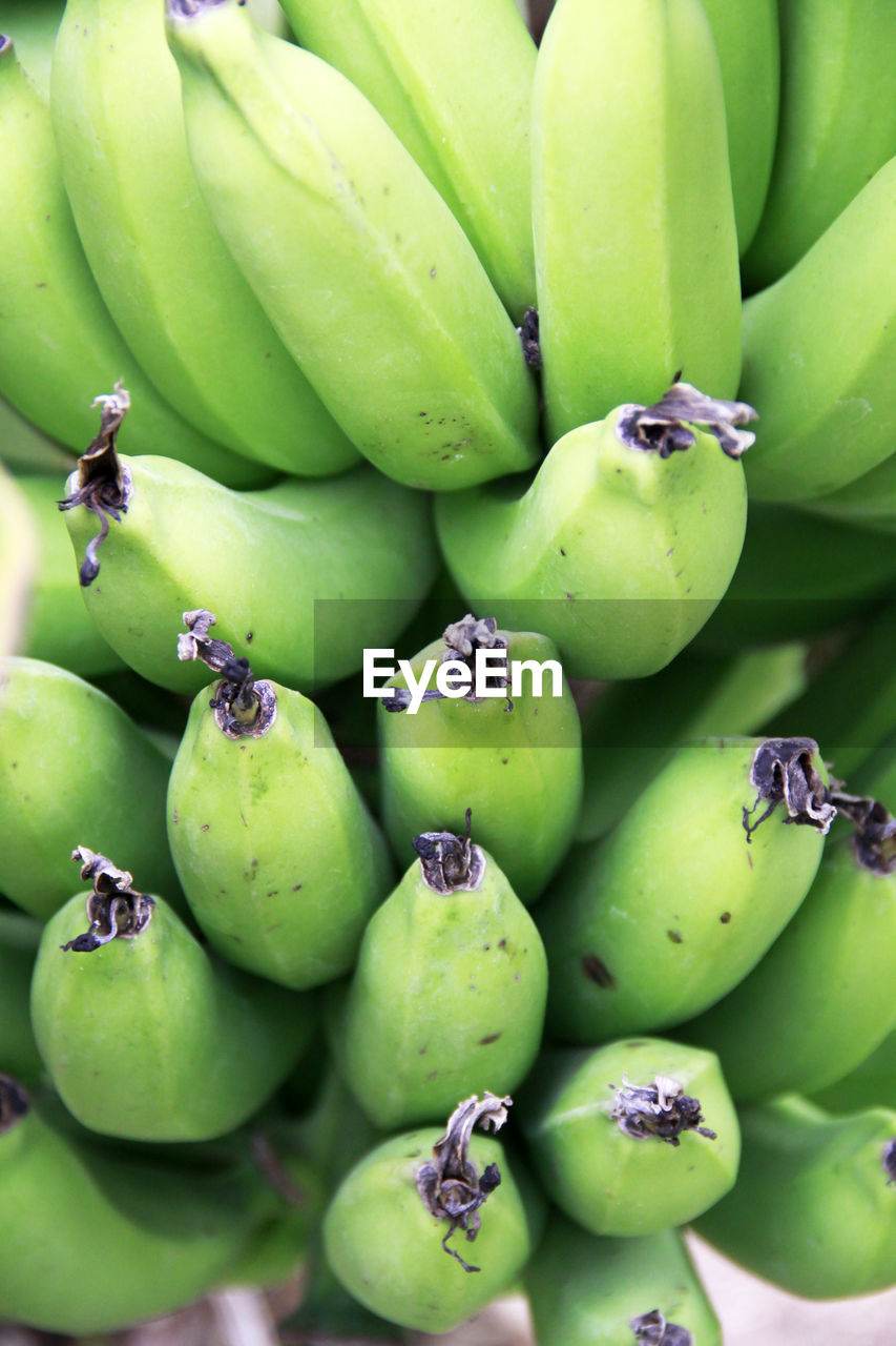 fruit, food and drink, food, green color, healthy eating, freshness, banana, wellbeing, no people, close-up, full frame, abundance, backgrounds, large group of objects, day, market, still life, for sale, market stall, stack, ripe, retail display