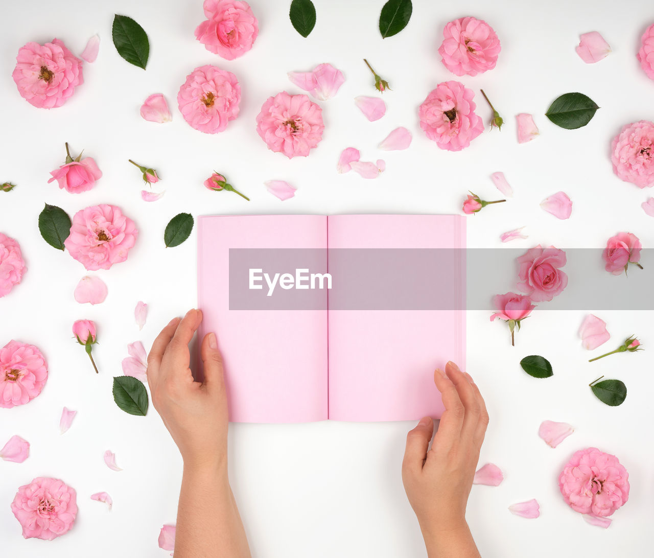 pink color, one person, indoors, human hand, human body part, hand, real people, plant, directly above, book, publication, flower, flowering plant, women, holding, high angle view, lifestyles, body part, paper, floral pattern