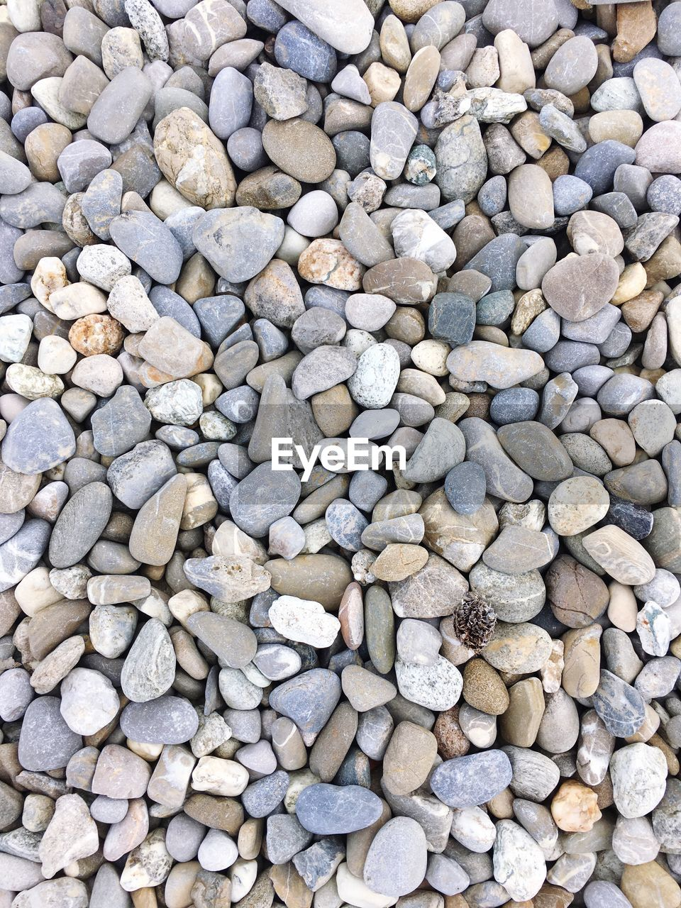 pebble, beach, stone - object, shore, pebble beach, full frame, backgrounds, large group of objects, nature, abundance, no people, outdoors, day, beauty in nature, close-up