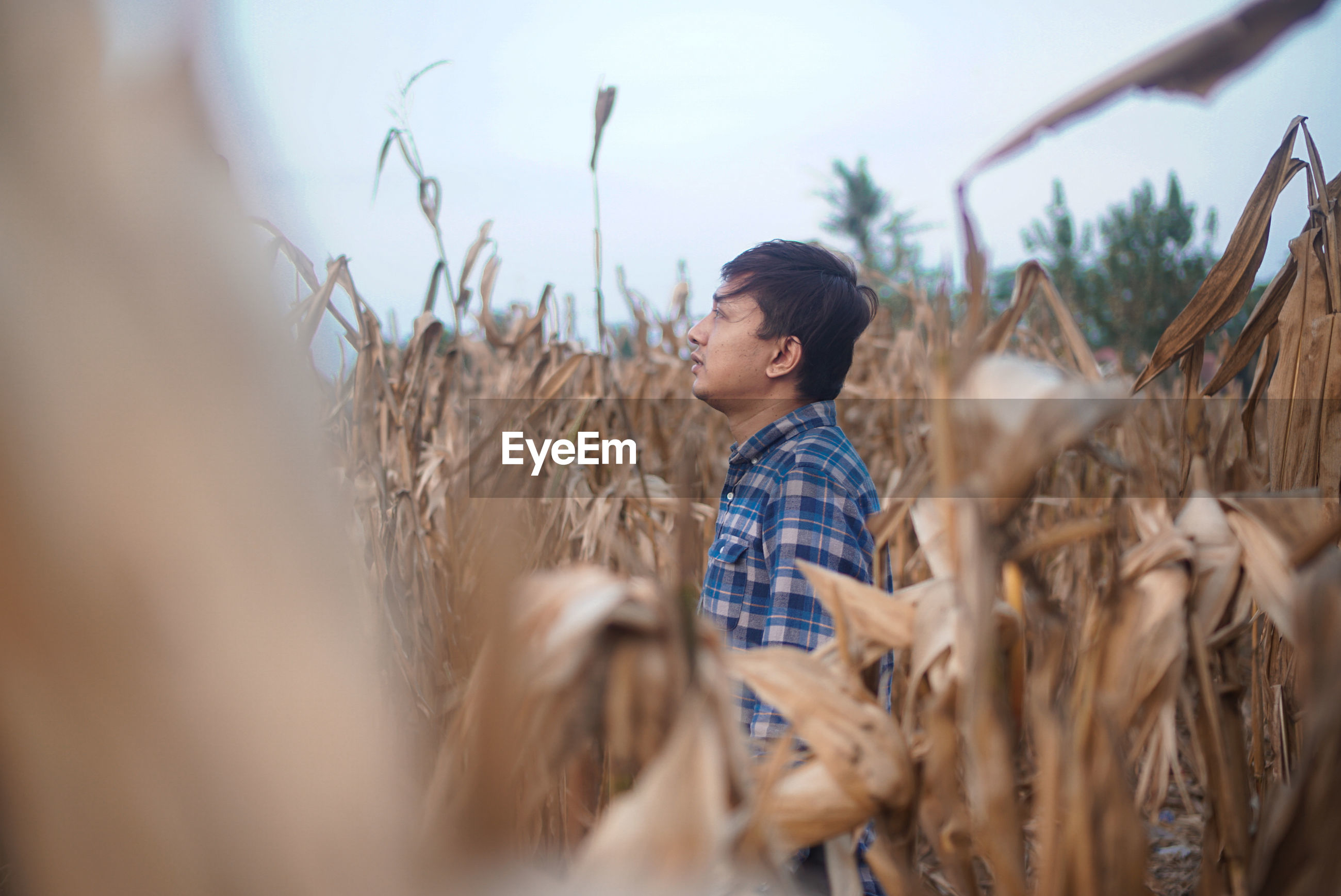 Side view of man standing in farm