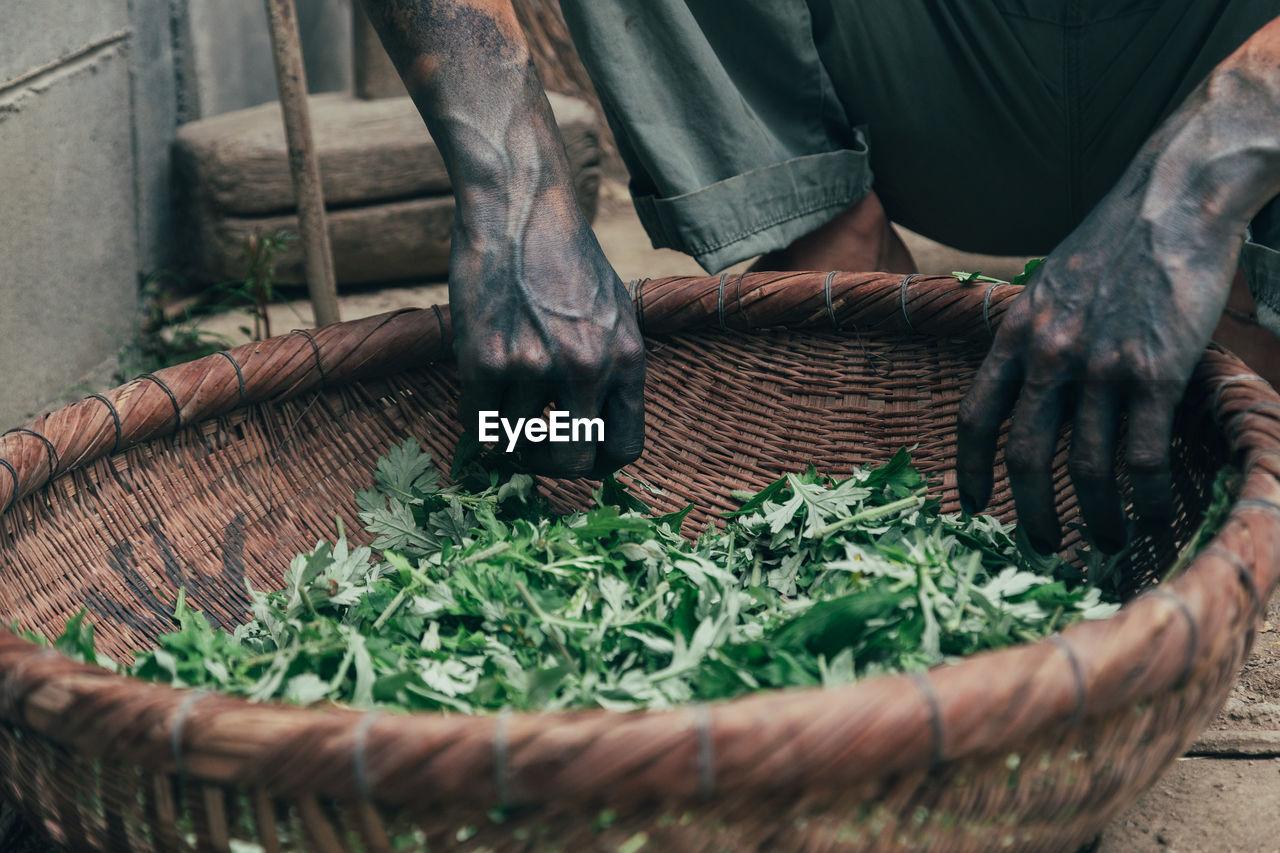 Midsection Of Man Picking Leaf Vegetables From Basket