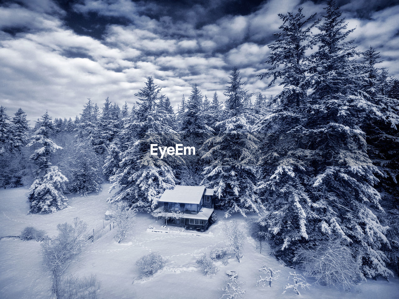 snow, winter, cold temperature, tree, plant, scenics - nature, nature, mountain, sky, day, beauty in nature, cloud - sky, no people, architecture, building exterior, built structure, tranquil scene, land, forest, extreme weather, outdoors, snowcapped mountain, coniferous tree