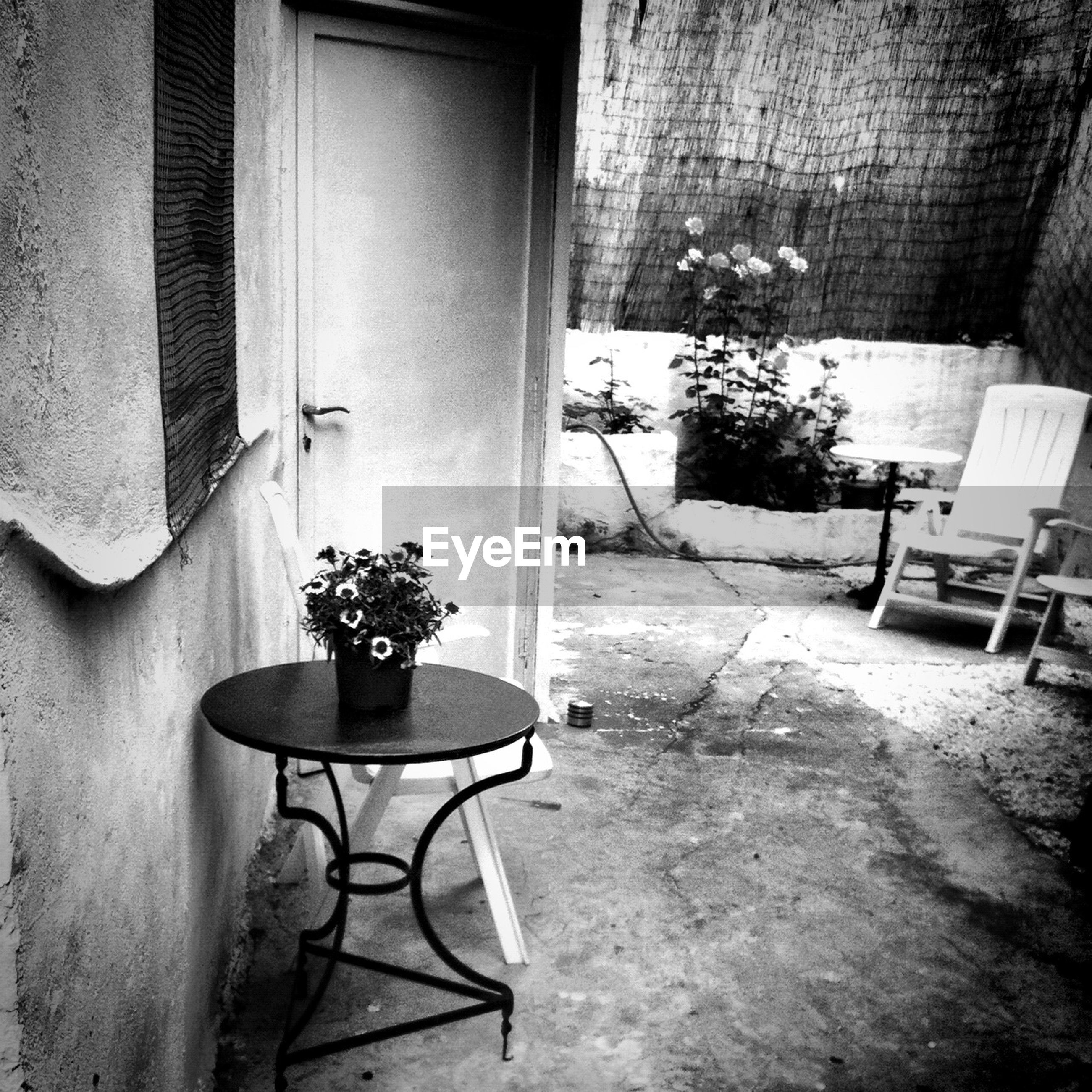 chair, table, potted plant, absence, indoors, empty, architecture, house, built structure, window, furniture, vase, flower pot, plant, seat, home interior, wall - building feature, no people, flower, sunlight