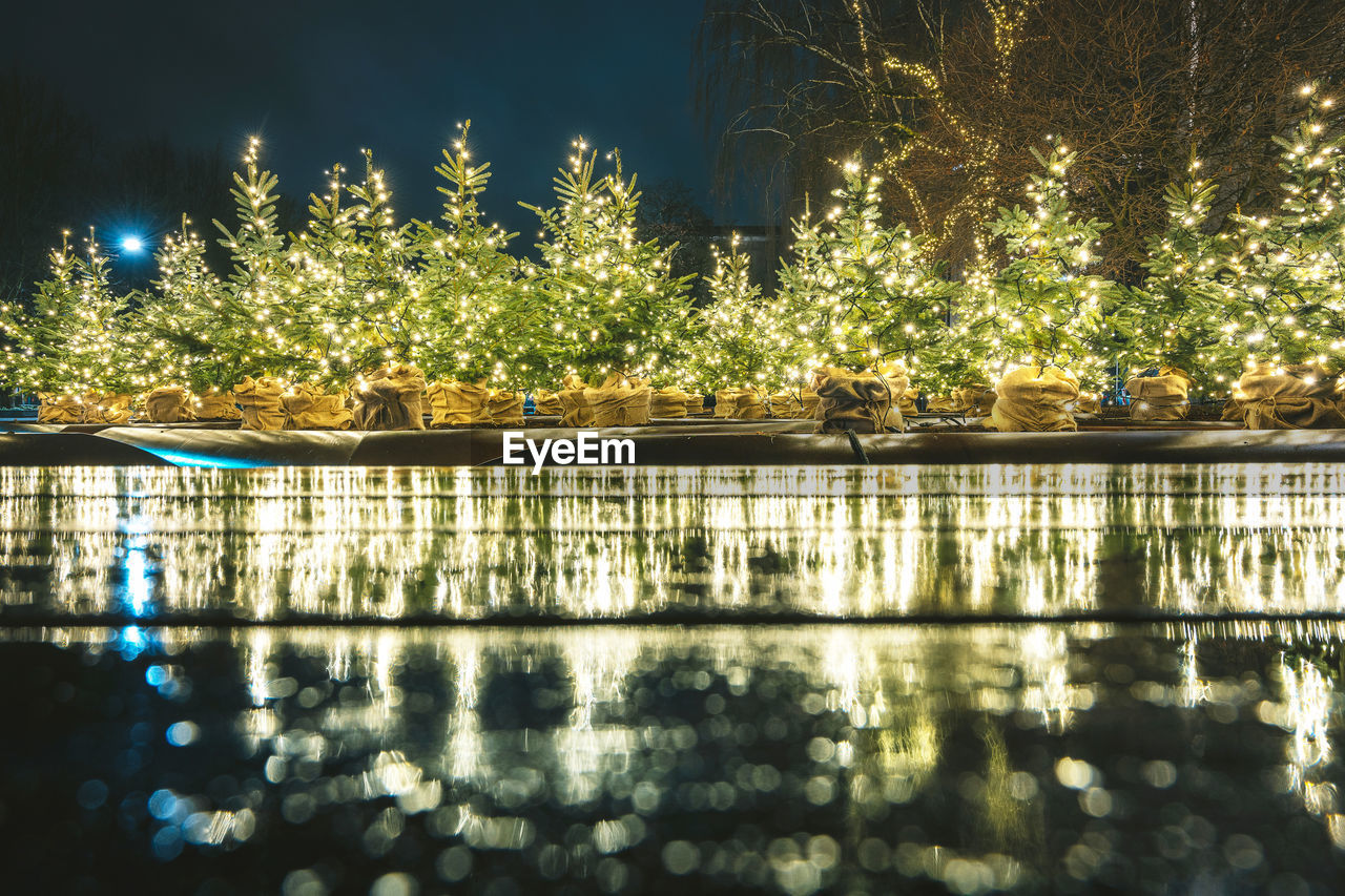 Illuminated christmas tree by lake at night