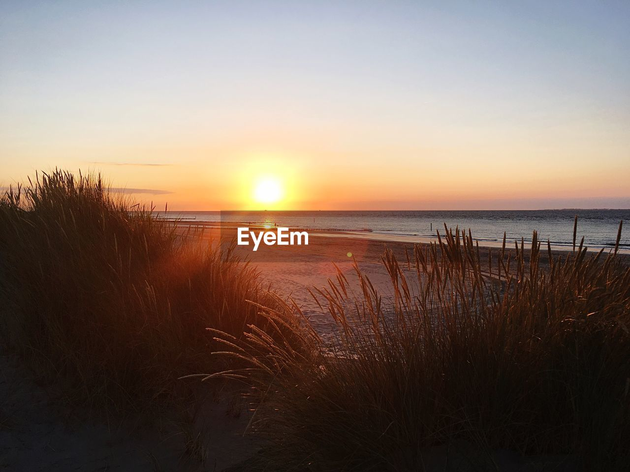 sunset, sky, water, scenics - nature, beauty in nature, tranquility, sea, tranquil scene, plant, beach, grass, land, horizon over water, nature, horizon, no people, sun, orange color, marram grass, outdoors, timothy grass