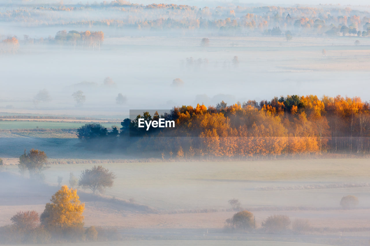 Autumn fog over the fields and forests in the countryside