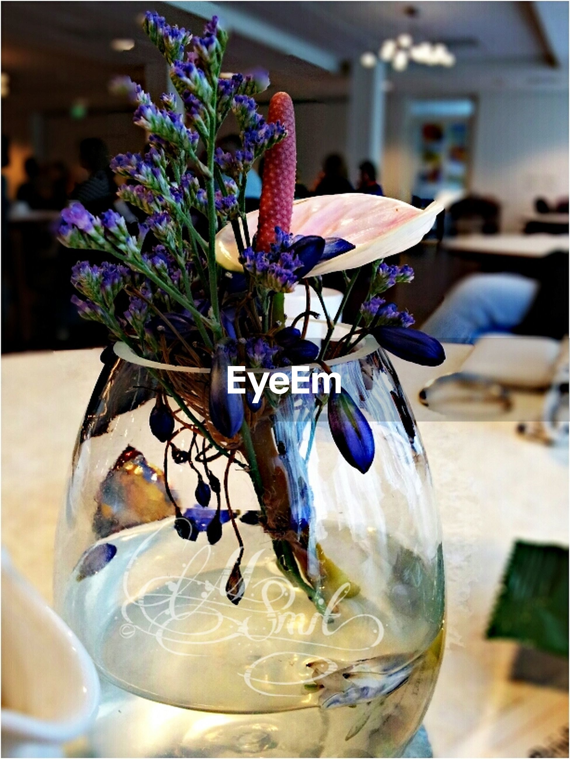 indoors, table, freshness, close-up, flower, focus on foreground, glass - material, still life, purple, fragility, vase, food and drink, drinking glass, transparent, blue, decoration, drink, selective focus, refreshment, no people