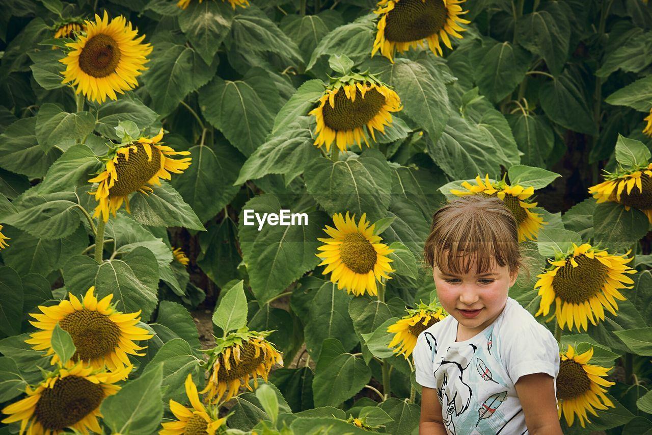 Girl Against Sunflowers
