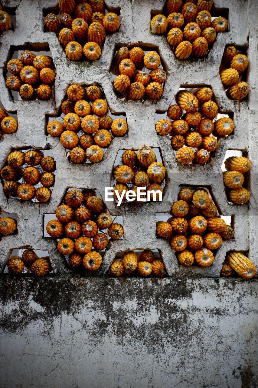 Sweetcorns Stuck In Holes On Wall
