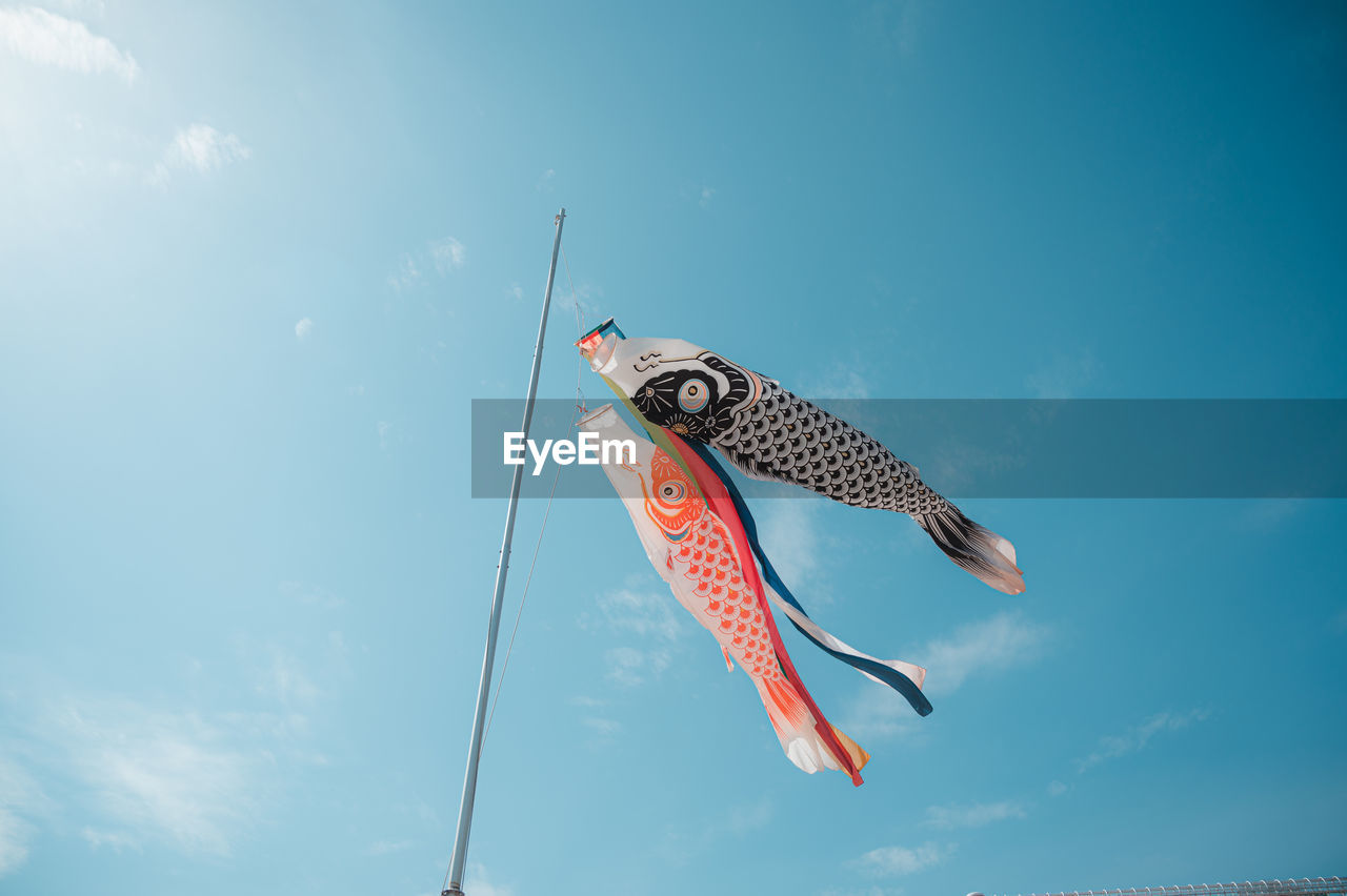 Low angle view of fish in mid-air against sky